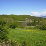 Un passeig per l'estany a la primavera - L'estany Turisme Rural casa l'hereu