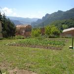 - Visita l'hort Turisme Rural casa l'hereu