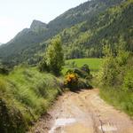 Serra de Peracalç, davant del poble de Montcortès. - El poble Turisme Rural casa l'hereu