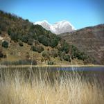 Els joncs durant l'hivern amb muntanyes de la Vall Fosca al fons. - L'estany Turisme Rural casa l'hereu