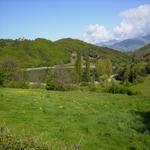 Els verds de la primavera. - L'estany Turisme Rural casa l'hereu