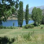 L'estany a l'estiu. - L'estany Turisme Rural casa l'hereu