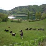 Estany de Montcortès a 200m de la casa - Benvinguts al Pallars Sobirà Turisme Rural casa l'hereu
