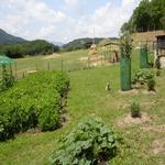 - L'hort i el Corral Turisme Rural casa l'hereu