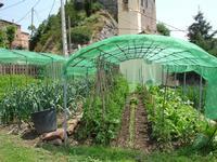 Turisme Rural casa l'hereu  :: Visita l'hort -
