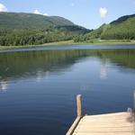 Entrador estany de Montcortès. - L'estany a l'estiu Turisme Rural casa l'hereu