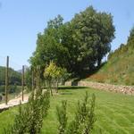 Jardí - El jardí de l'Estisora Turisme Rural casa l'hereu