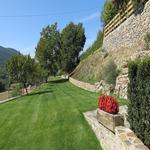- El jardí de l'Estisora Turisme Rural casa l'hereu